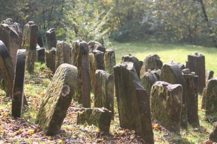 Żydowski cmentarz w Kazimierzu fot. M. Pietkun