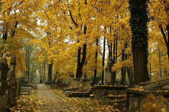 Cmentarz Rakowicki w Krakowie fot. Bartosz Twarowski