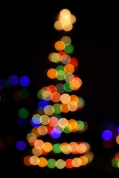 Christmas_lights_-_1